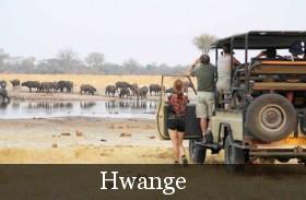 mzhwange