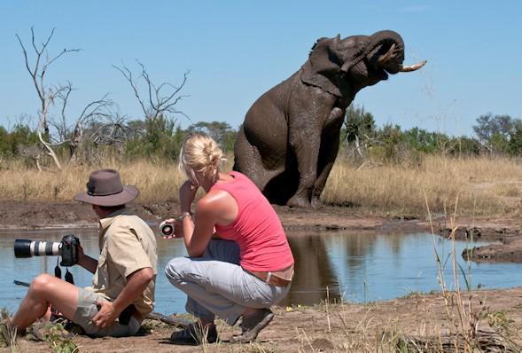 Our Zimbabwe Safaris Gets You Close To Nature
