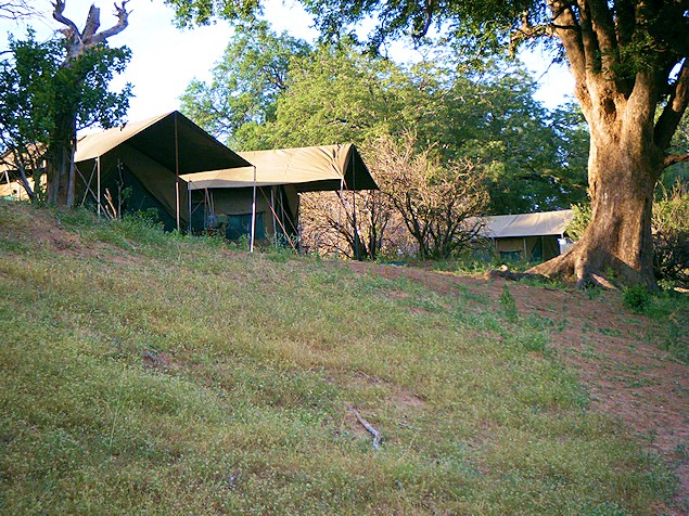Our Luxury Tented Safaris Zimbabwe